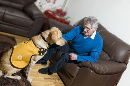 dementia dog sits with man in armchair
