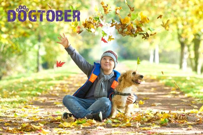 boy with dog in autumn woodland