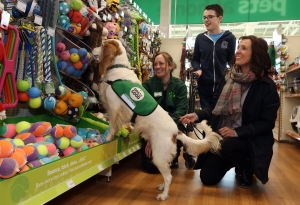 assistance dog chooses toy in pets at home store
