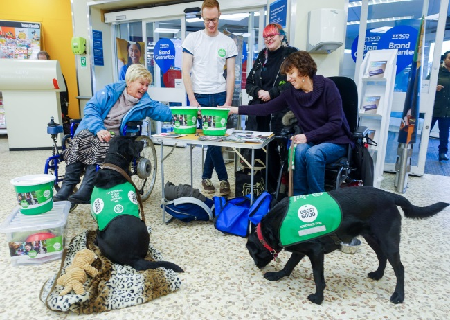 Group of people and dogs fundraising in a supermarket