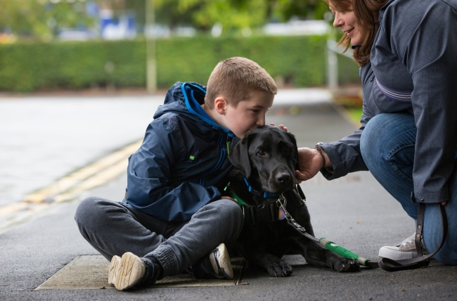 Autism assistance dog team
