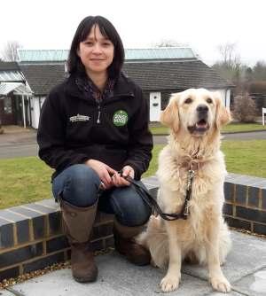 Puppy coordinator