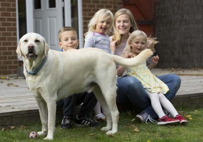Family Dog - Jacob & family with Sam