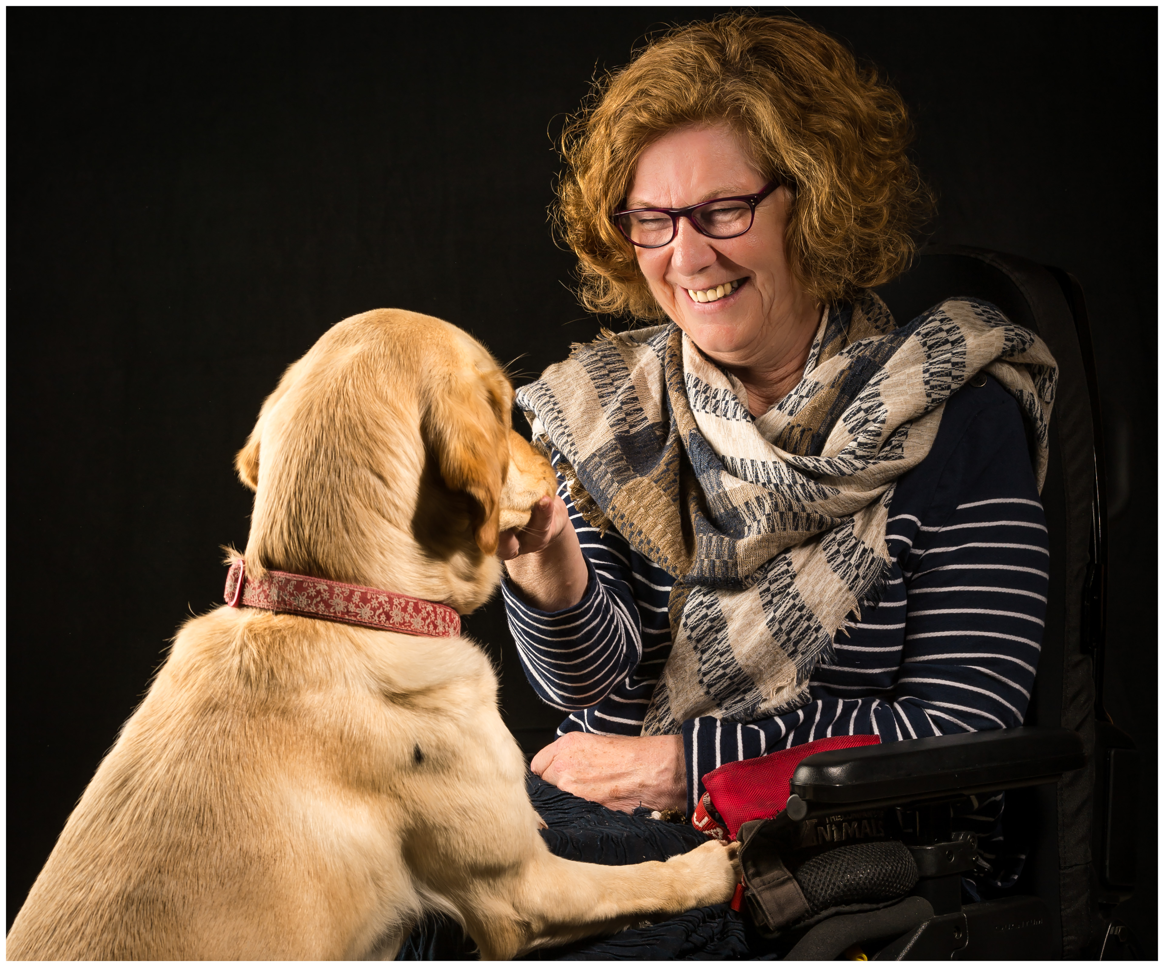 Lady in wheelchair smiling at assistance dog