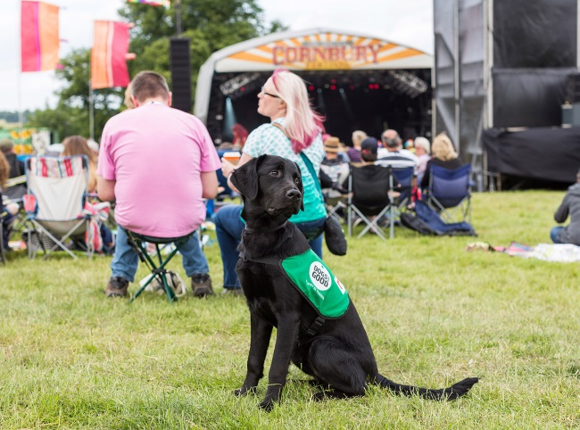 Cornbury Festival 2018 - win tickets