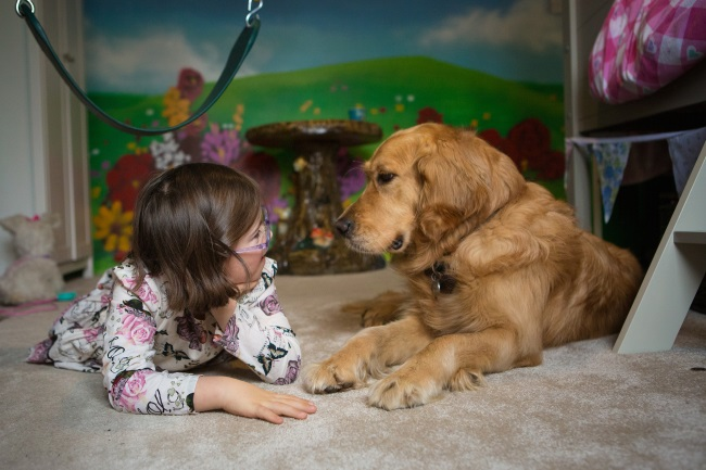 Eight year old Milli and her assistance dog golden retriever Emma in Milli's bedroom
