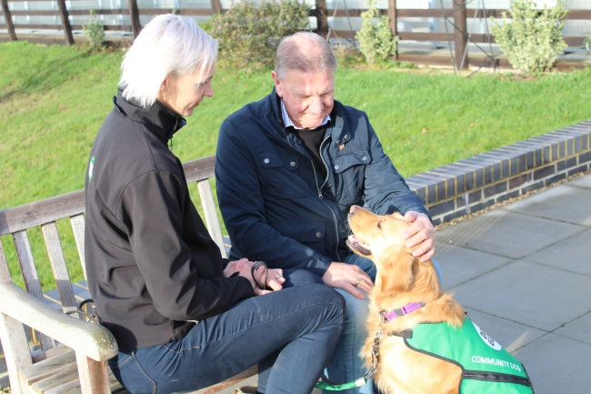 Community dogs for dementia - intervention vists