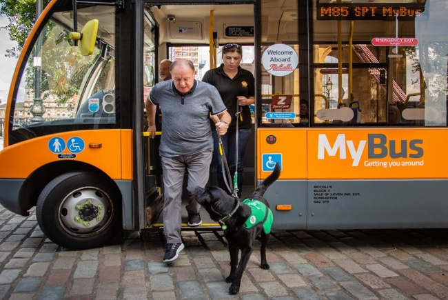 community dogs for dementia